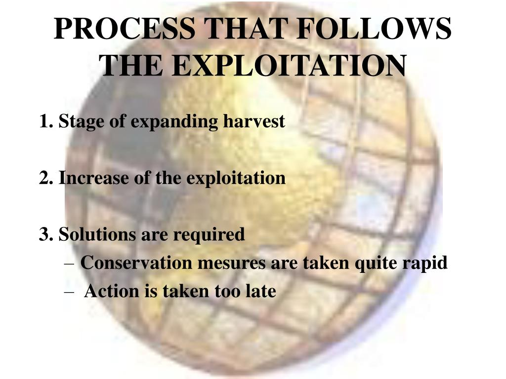 PROCESS THAT FOLLOWS THE EXPLOITATION