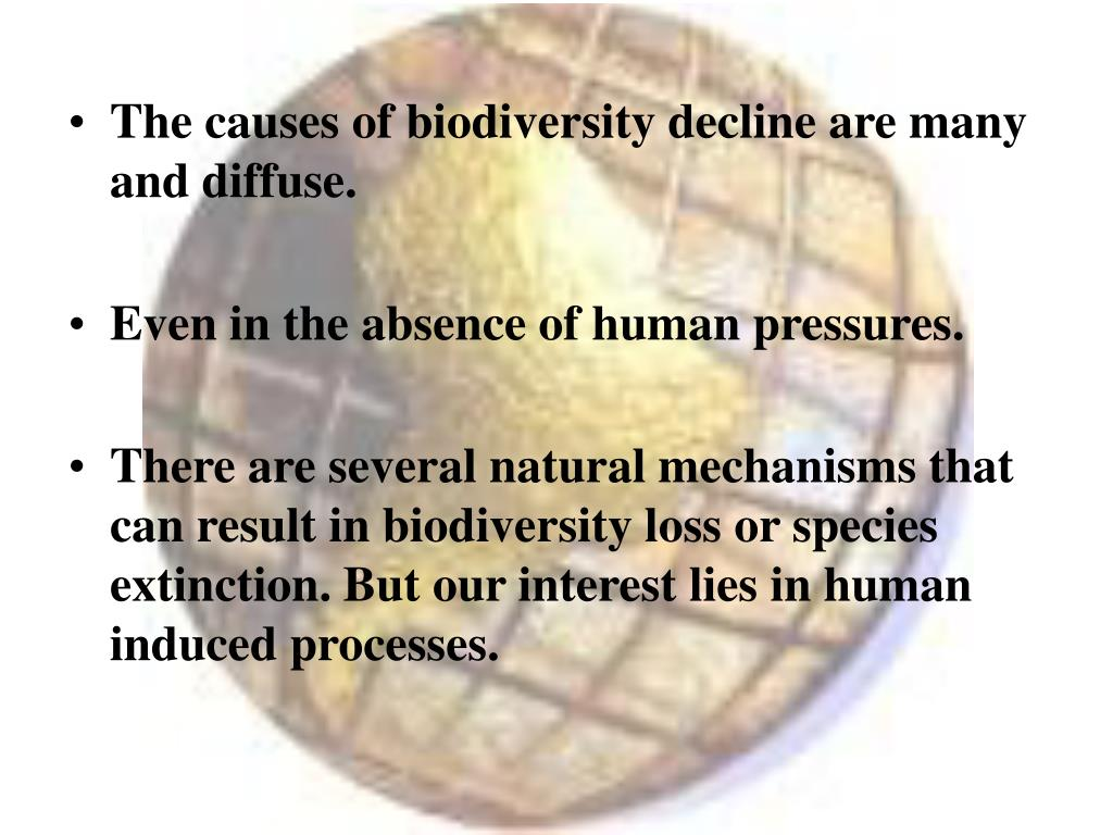 The causes of biodiversity decline are many and diffuse.