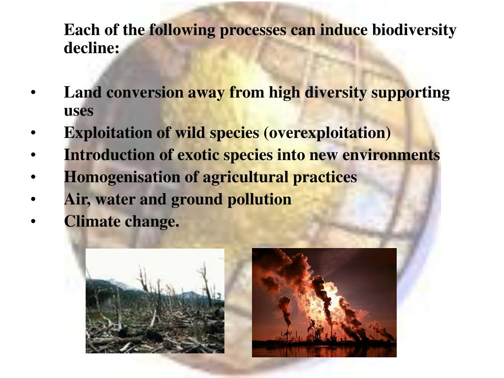 Each of the following processes can induce biodiversity decline: