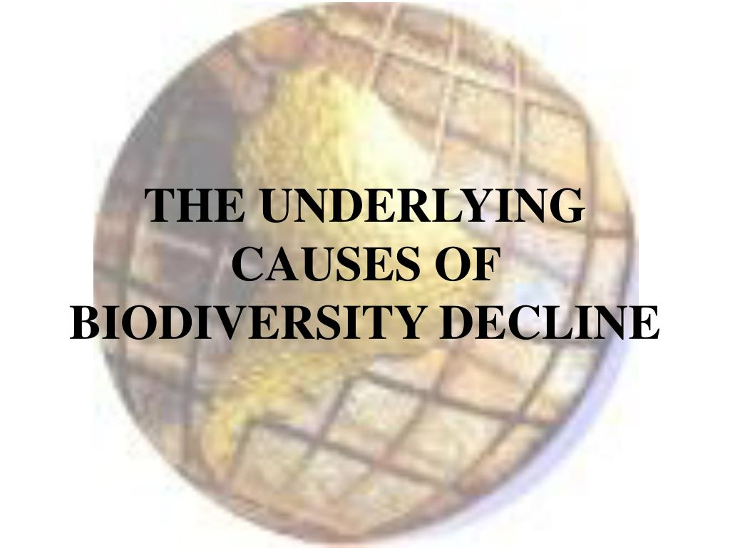 THE UNDERLYING CAUSES OF BIODIVERSITY DECLINE