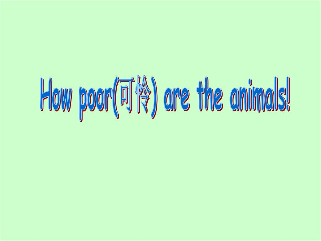 How poor(可怜) are the animals!