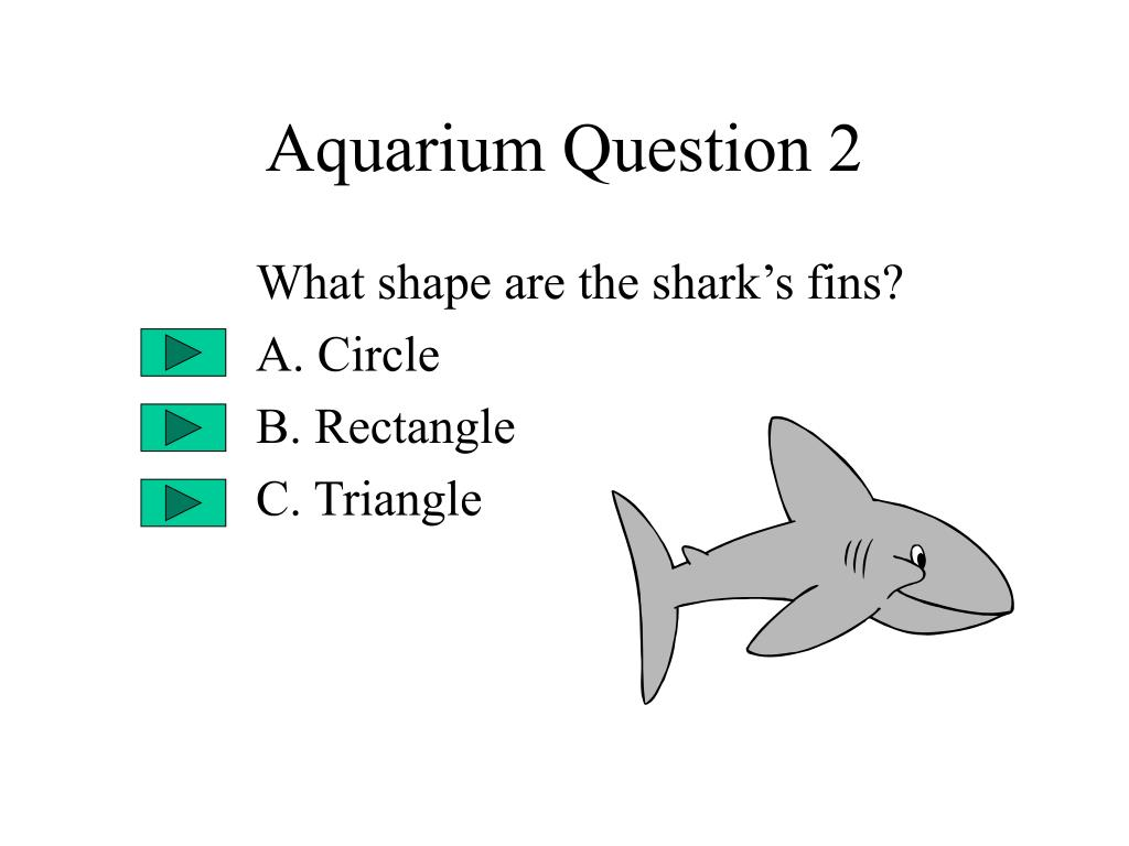 Aquarium Question 2