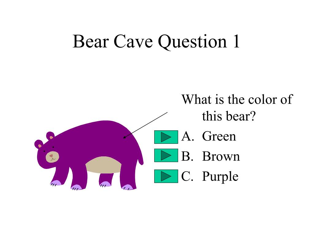 Bear Cave Question 1