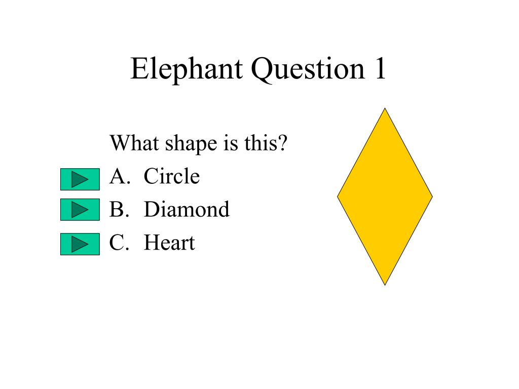 Elephant Question 1