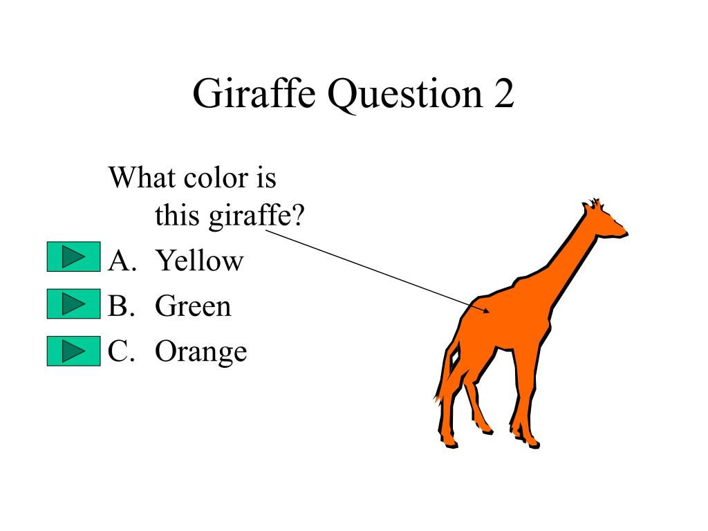 Giraffe Question 2