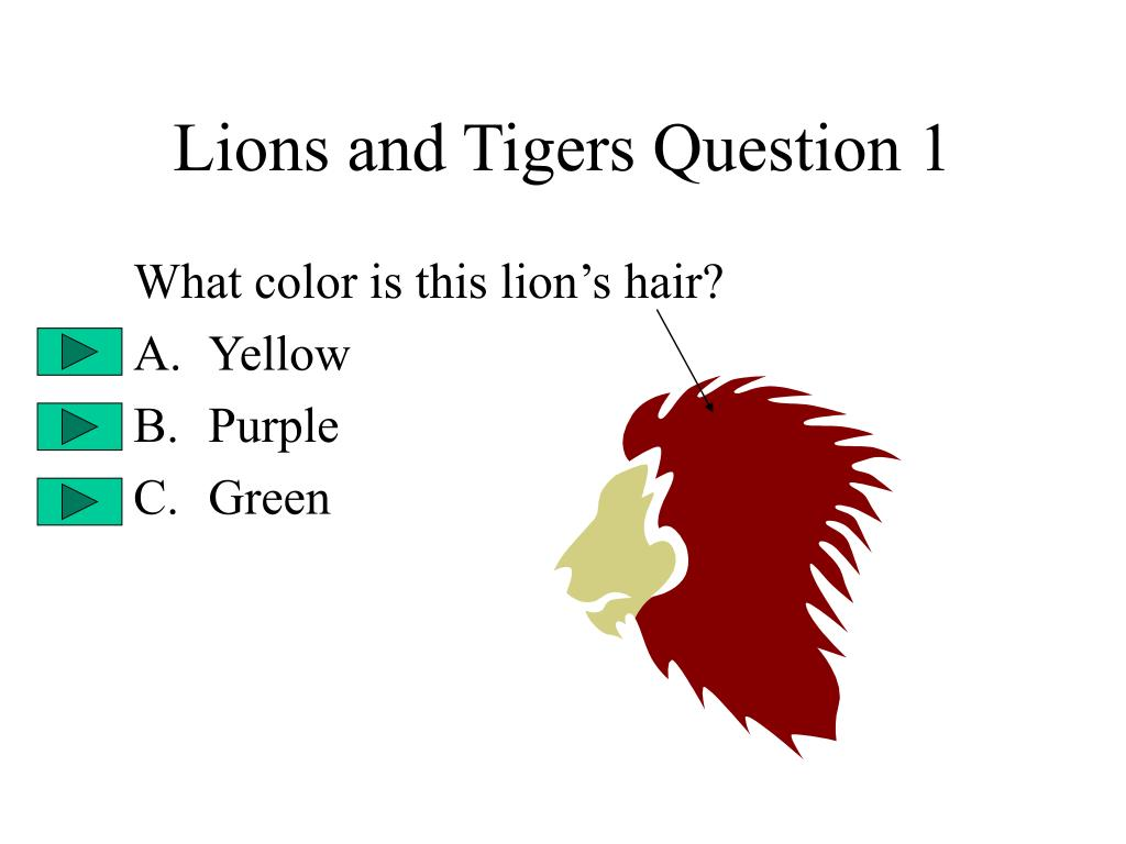 Lions and Tigers Question 1