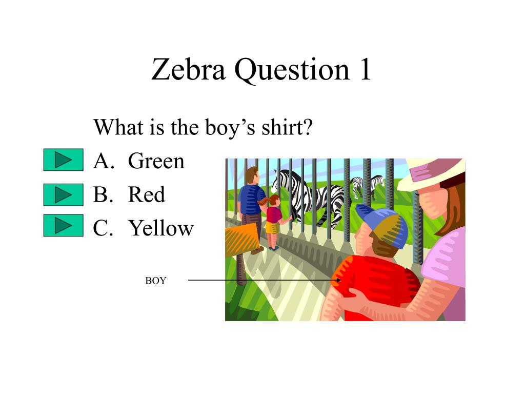 Zebra Question 1
