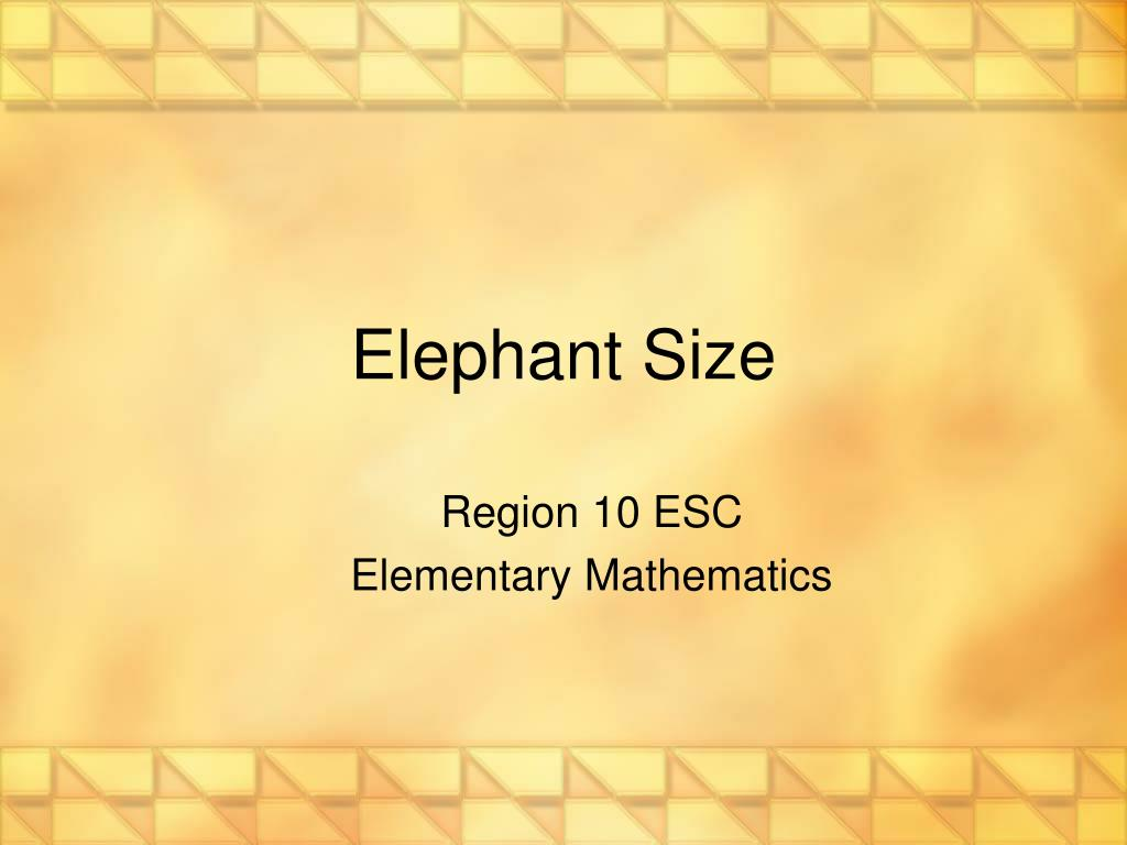 Elephant Size