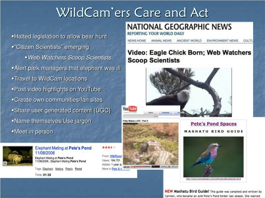 WildCam'ers Care and Act