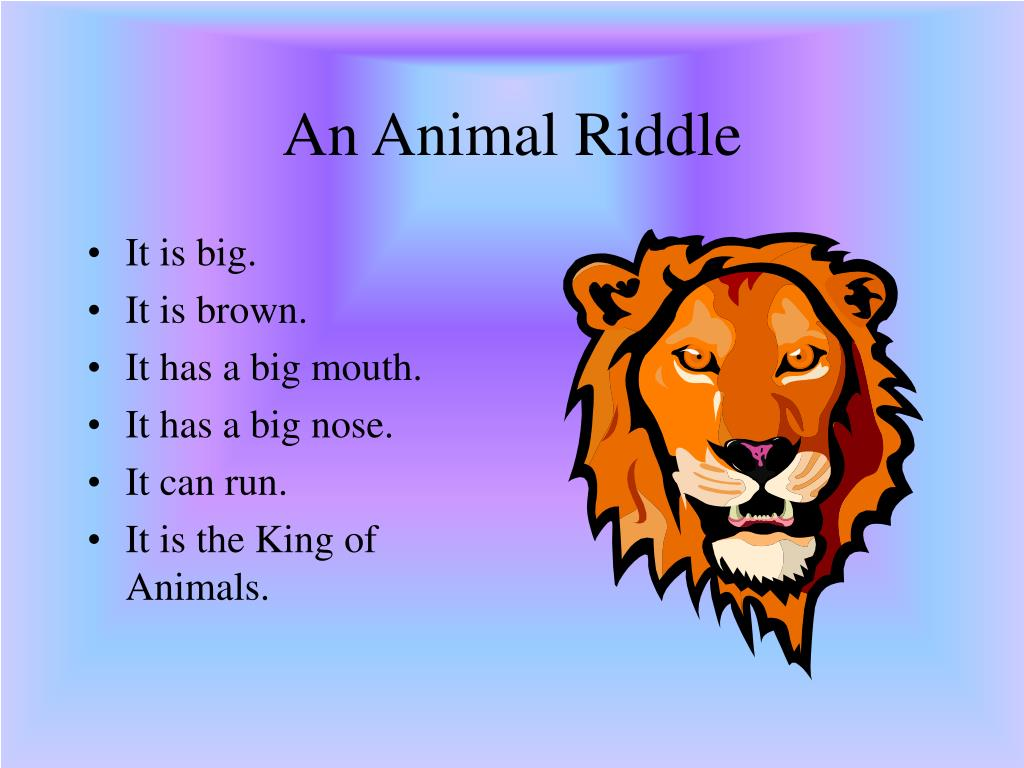 An Animal Riddle