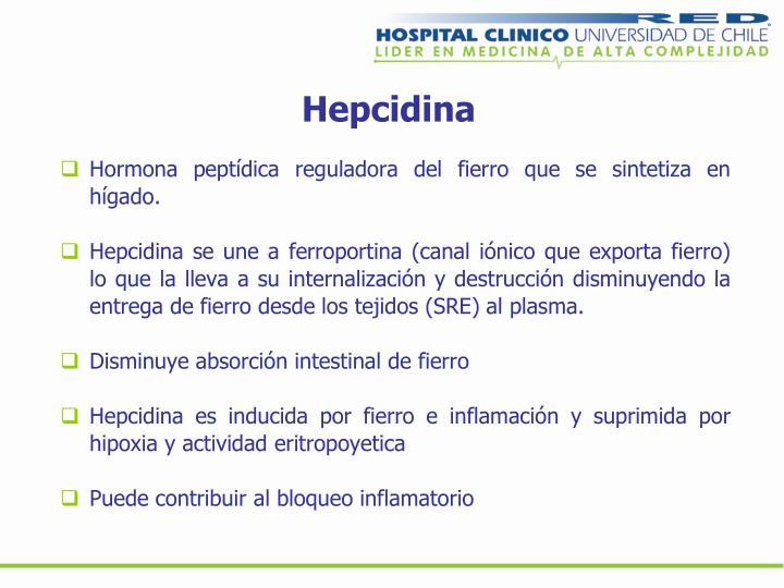 Hepcidina