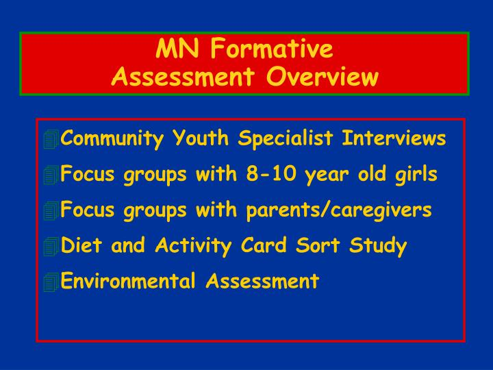 Mn formative assessment overview