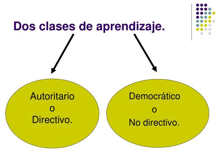 Dos clases de aprendizaje.