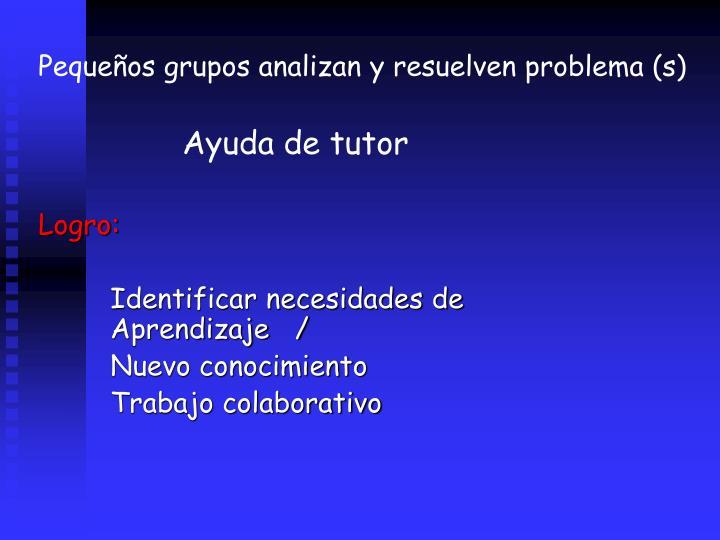 Pequeos grupos analizan y resuelven problema (s)