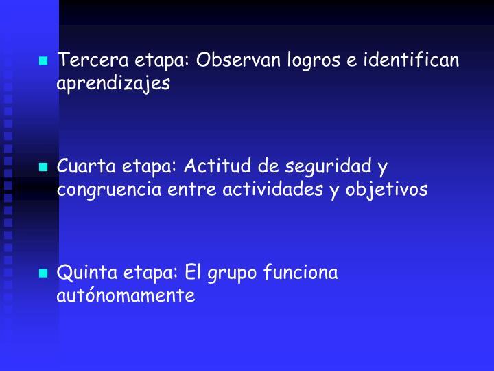Tercera etapa: Observan logros e identifican aprendizajes