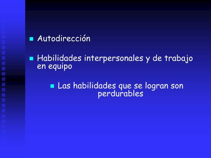 Autodireccin