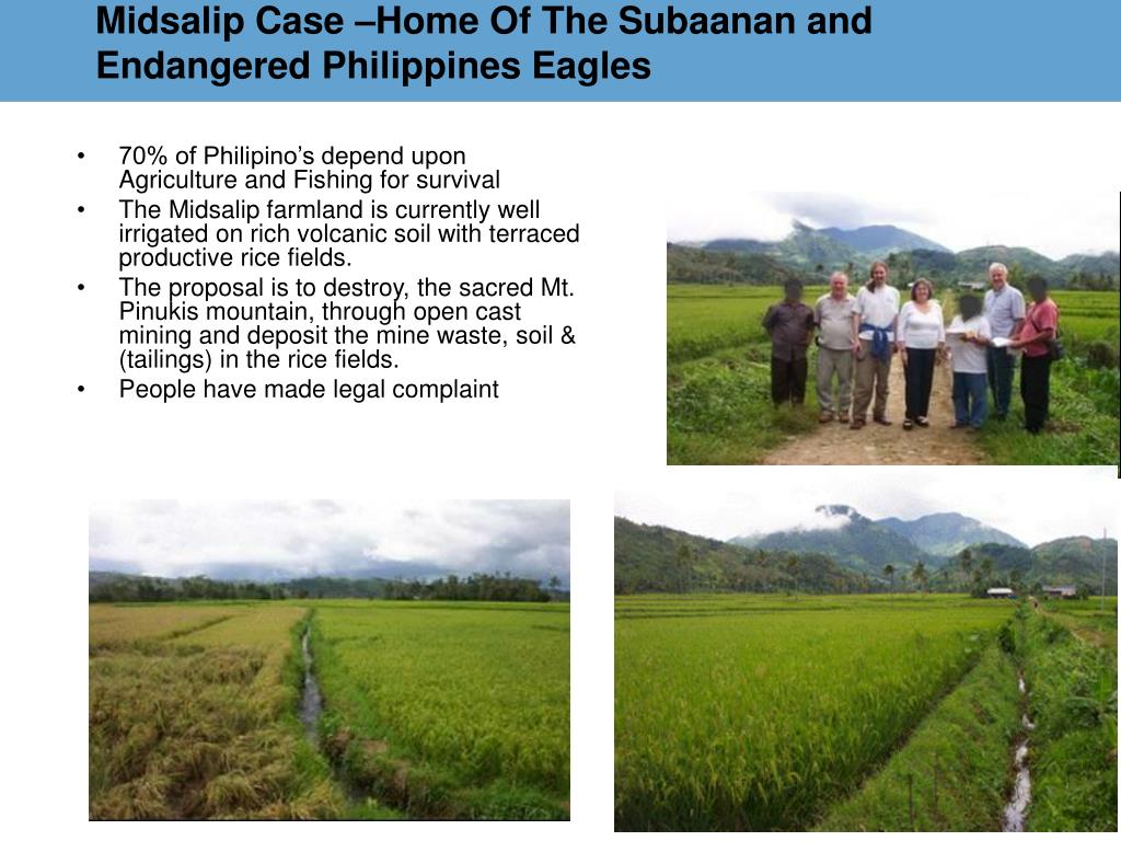 Midsalip Case –Home Of The Subaanan and Endangered Philippines Eagles