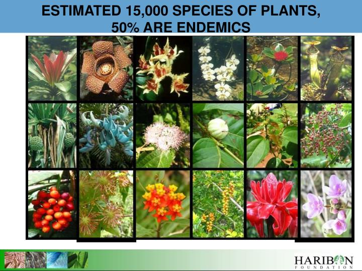 ESTIMATED 15,000 SPECIES OF PLANTS,