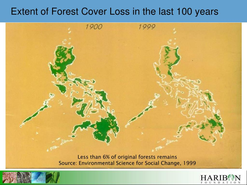 Extent of Forest Cover Loss in the last 100 years