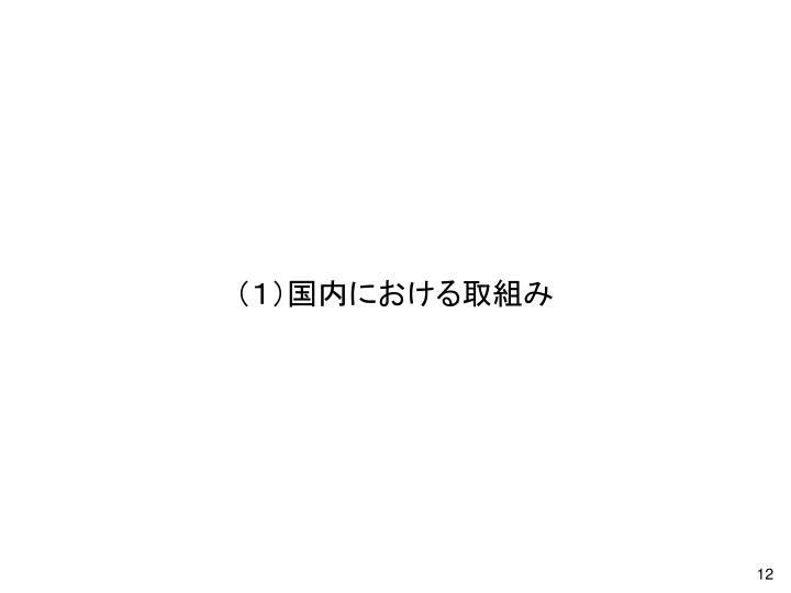 (1)国内における取組み