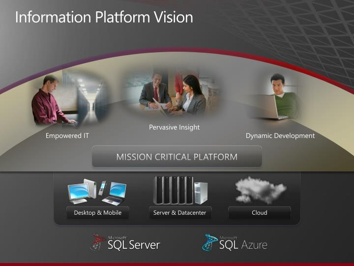 Information Platform Vision