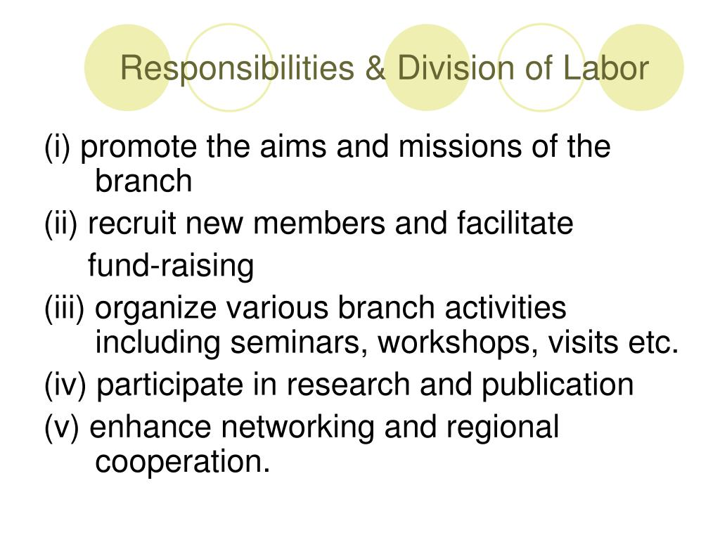 Responsibilities & Division of Labor