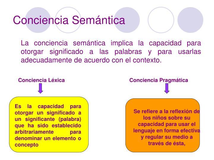 Conciencia Semántica