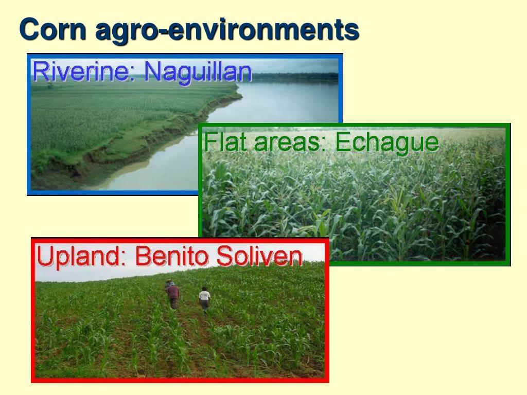 Corn agro-environments