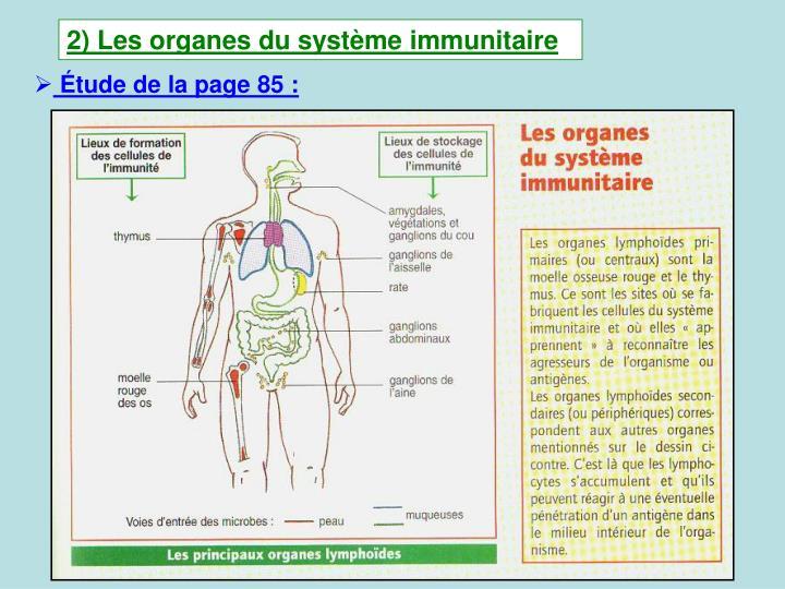 2) Les organes du systme immunitaire
