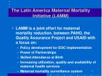 the latin america maternal mortality initiative lamm