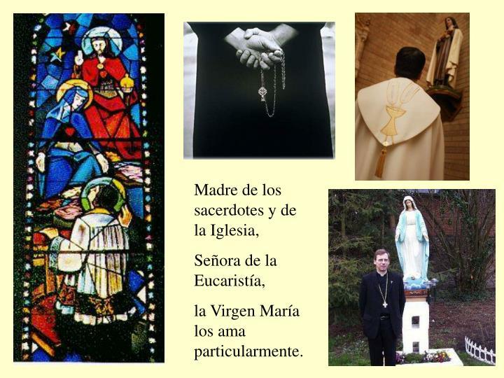 Madre de los sacerdotes y de la Iglesia,