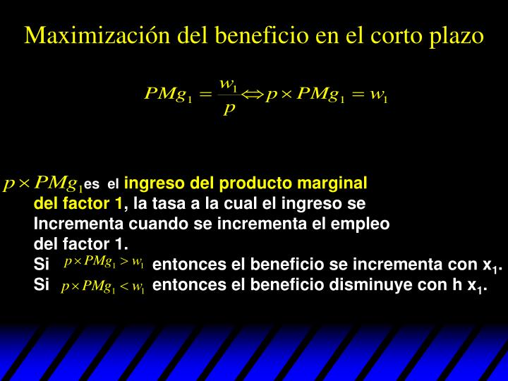 Maximización del beneficio en el corto plazo