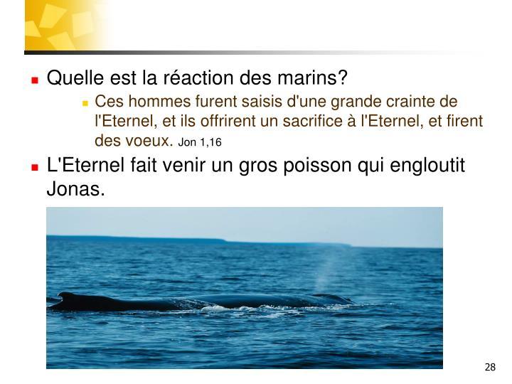 Quelle est la réaction des marins?