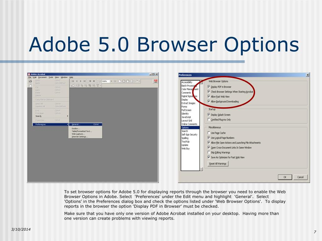 Adobe 5.0 Browser Options