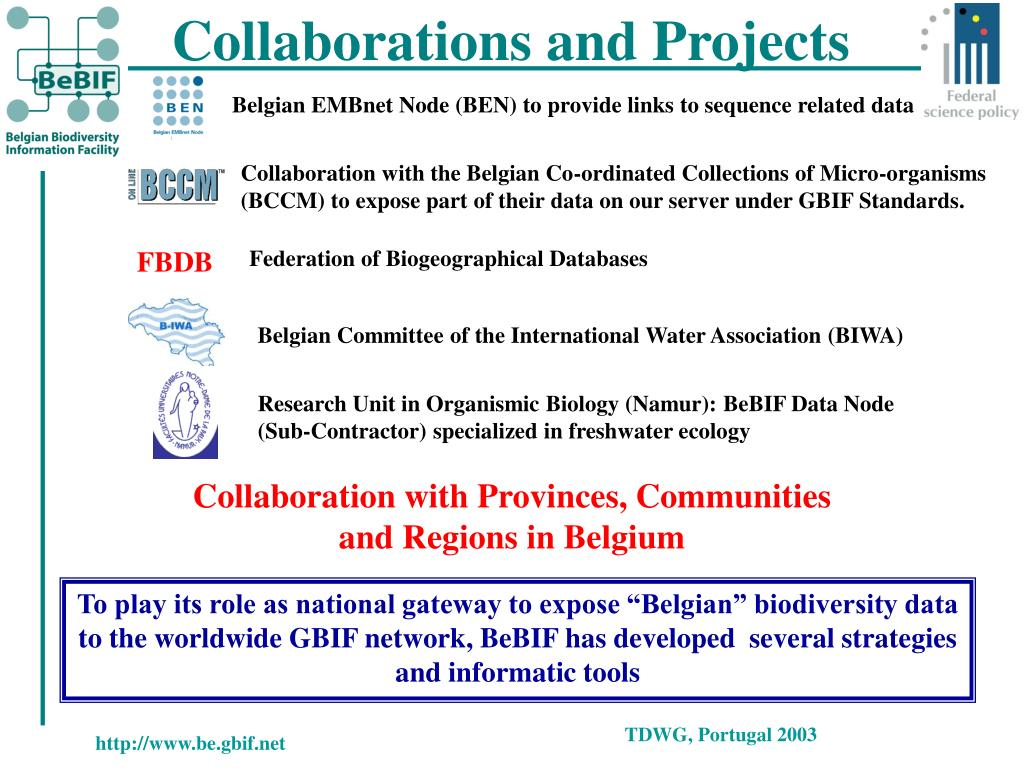 Collaborations and Projects