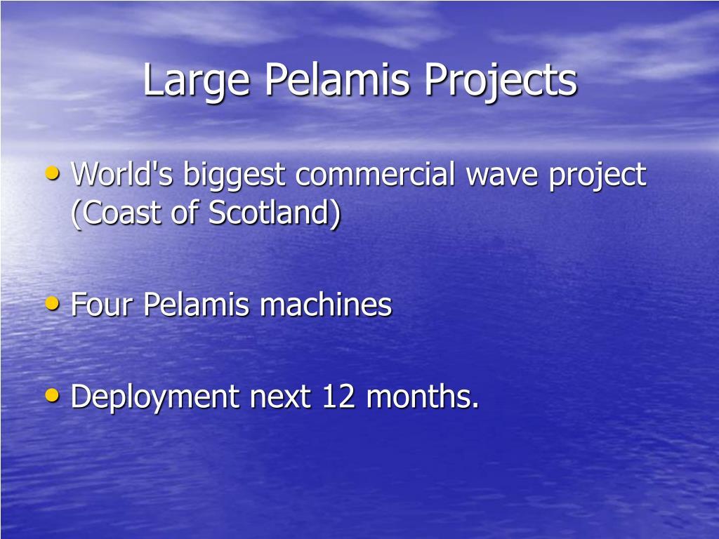 Large Pelamis Projects