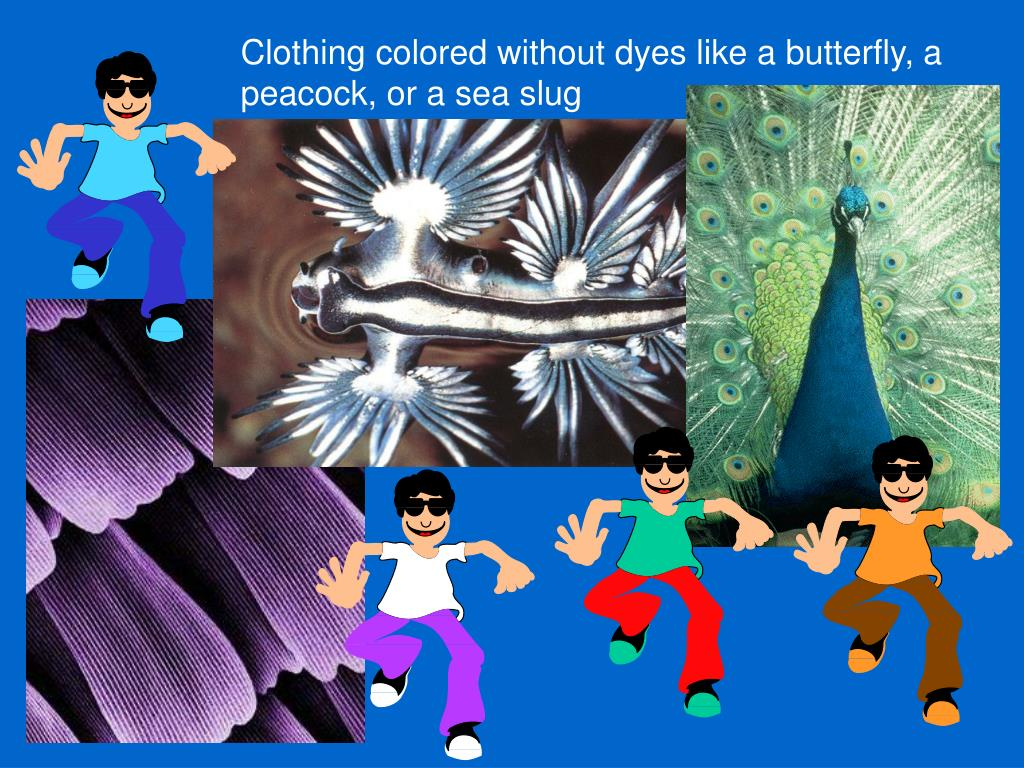 Clothing colored without dyes like a butterfly, a peacock, or a sea slug