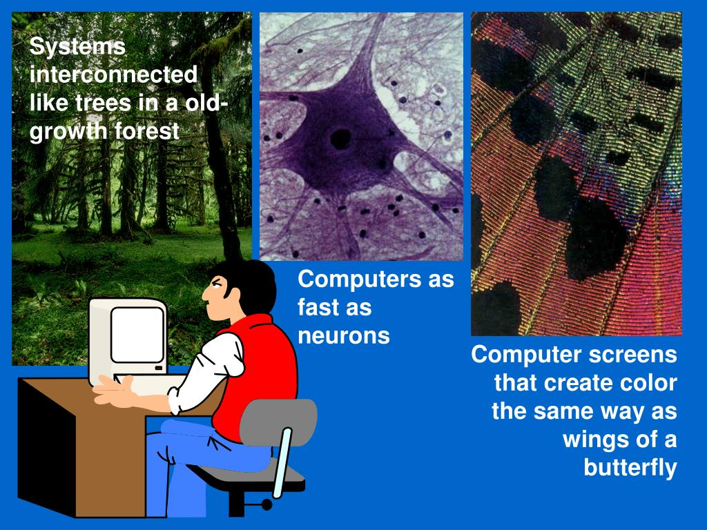 Systems interconnected like trees in a old-growth forest
