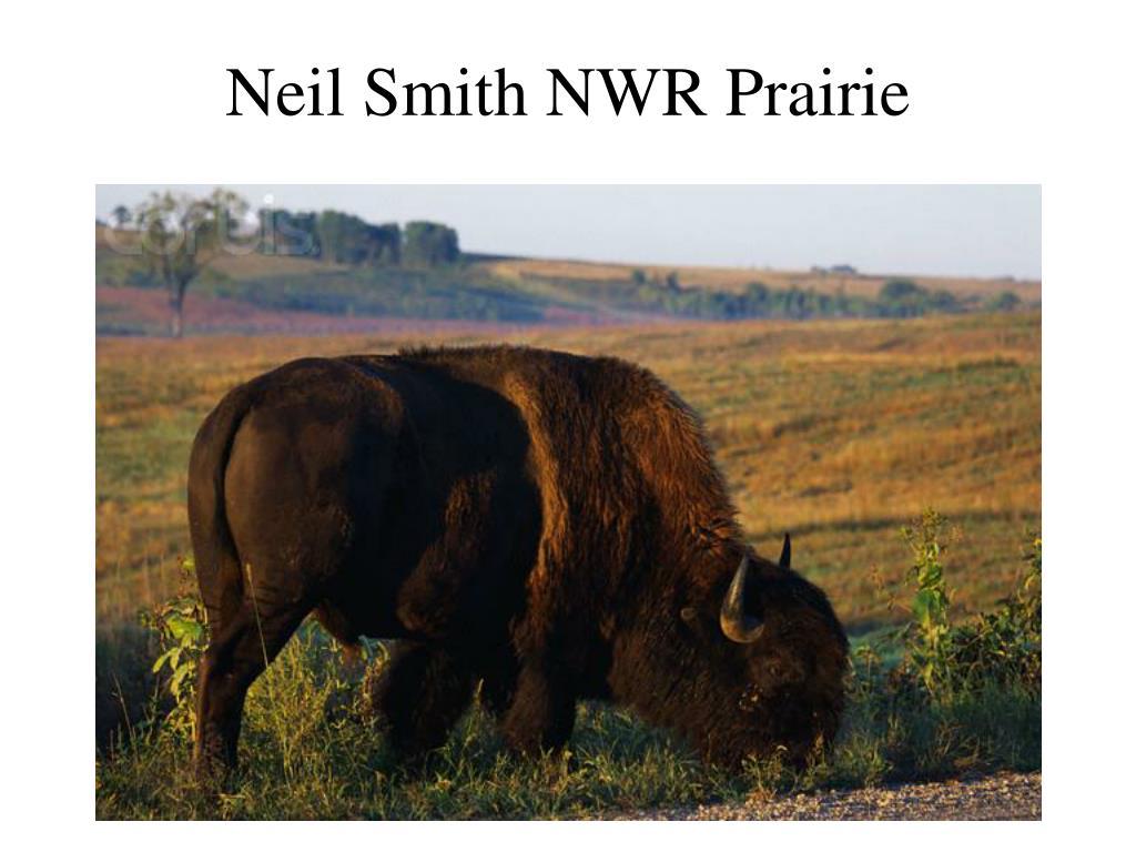 Neil Smith NWR Prairie
