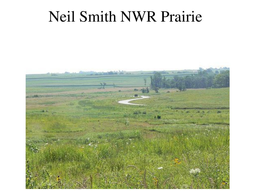 Neil Smith NWR Prairie