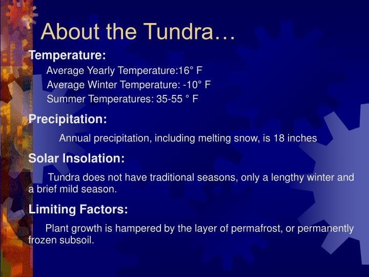 About the tundra