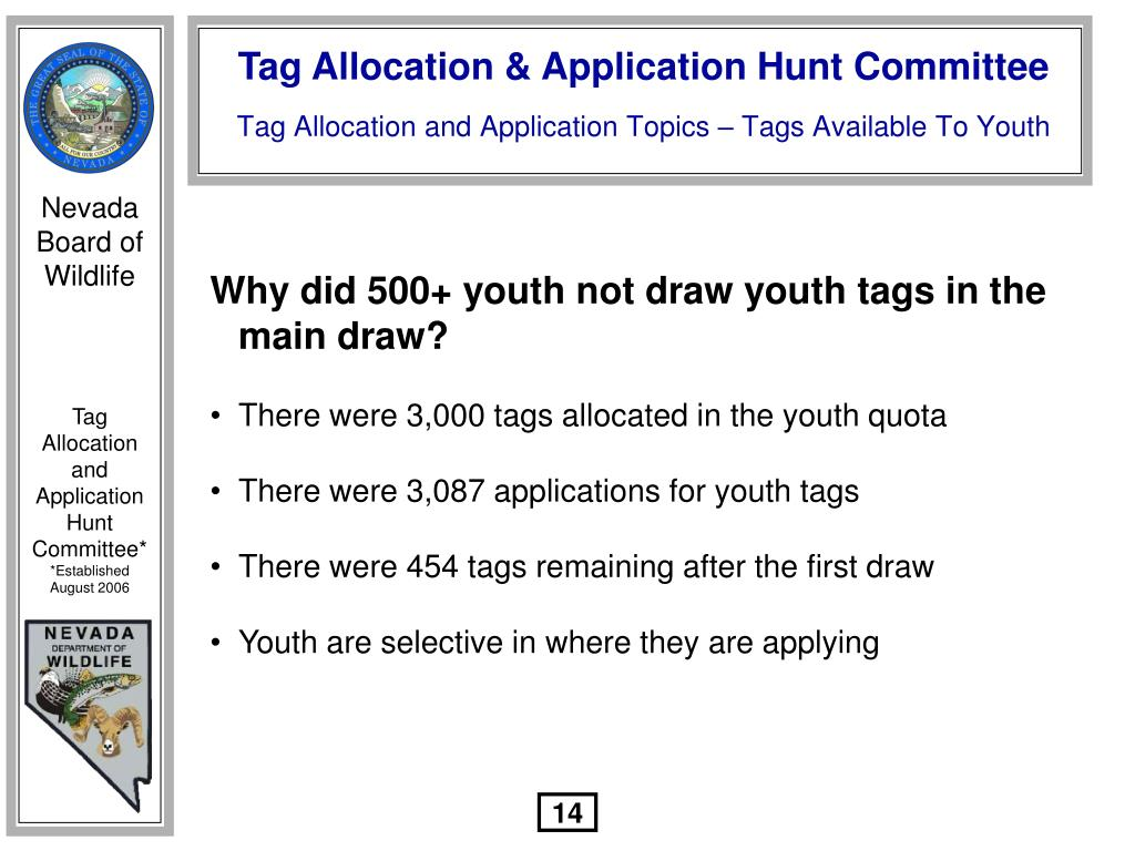 Why did 500+ youth not draw youth tags in the main draw?