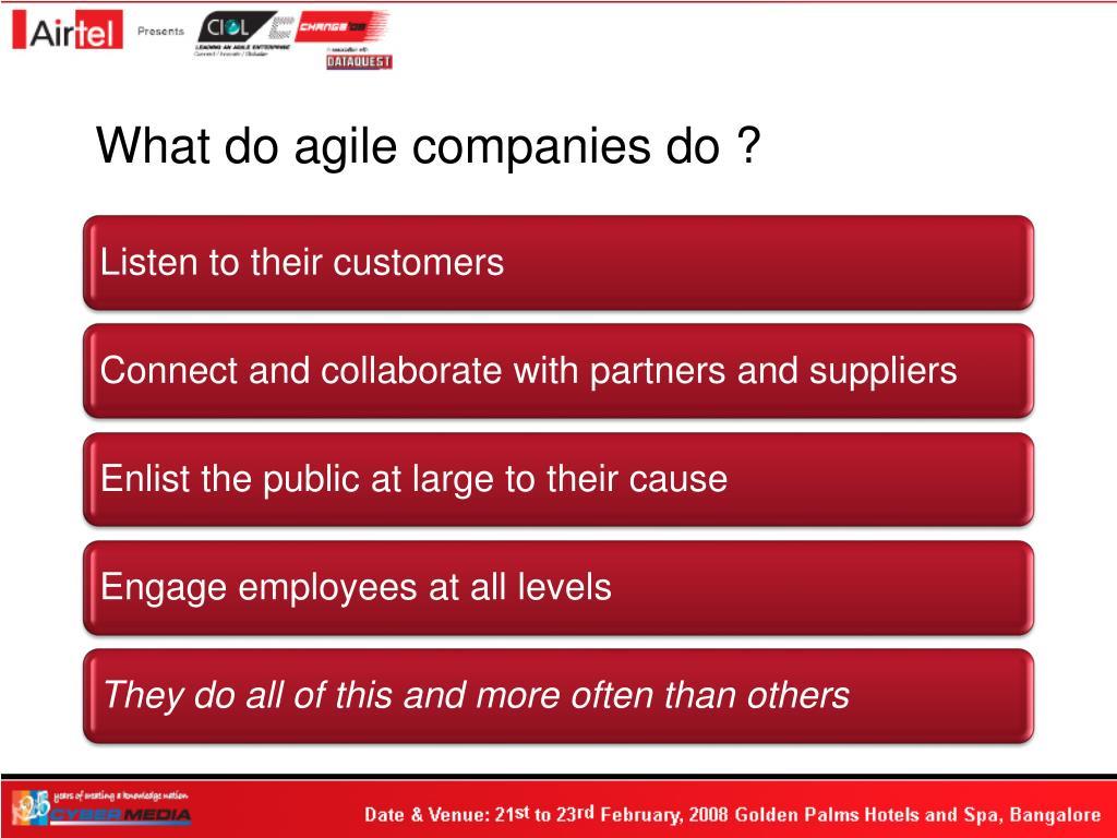 What do agile companies do ?