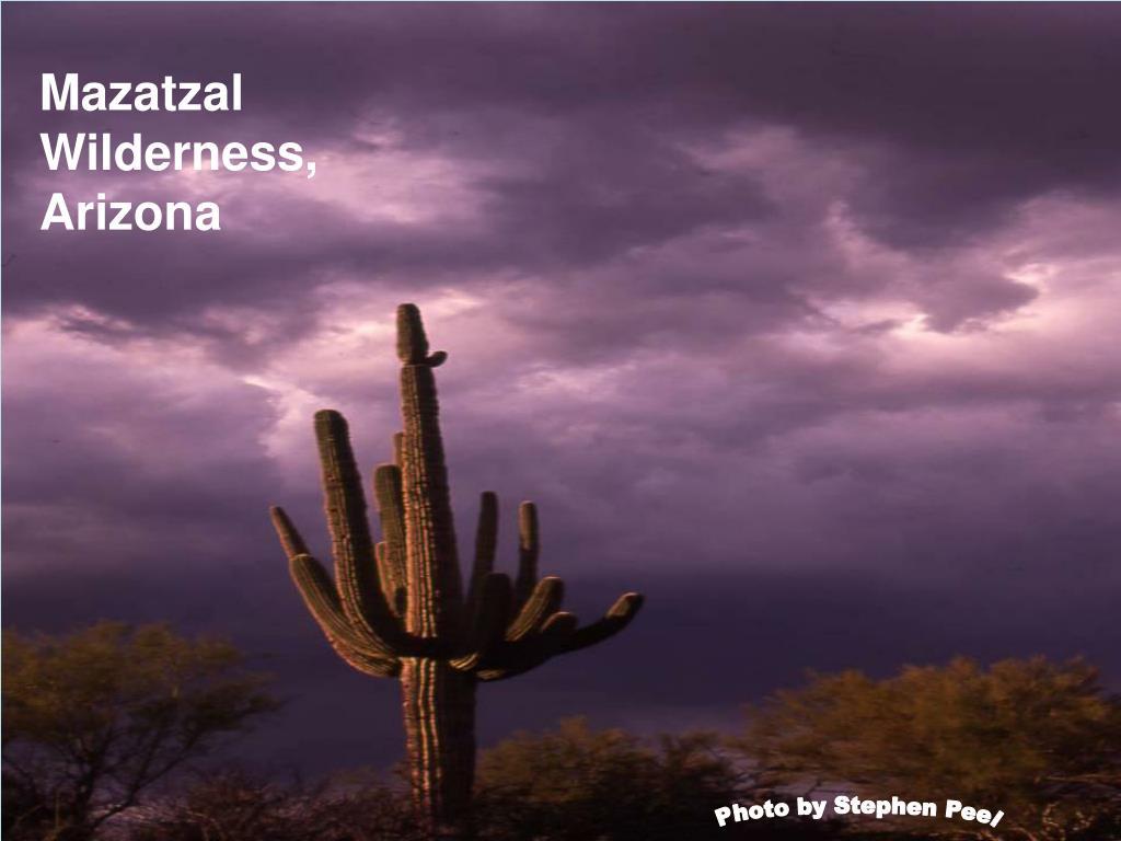 Mazatzal Wilderness, Arizona
