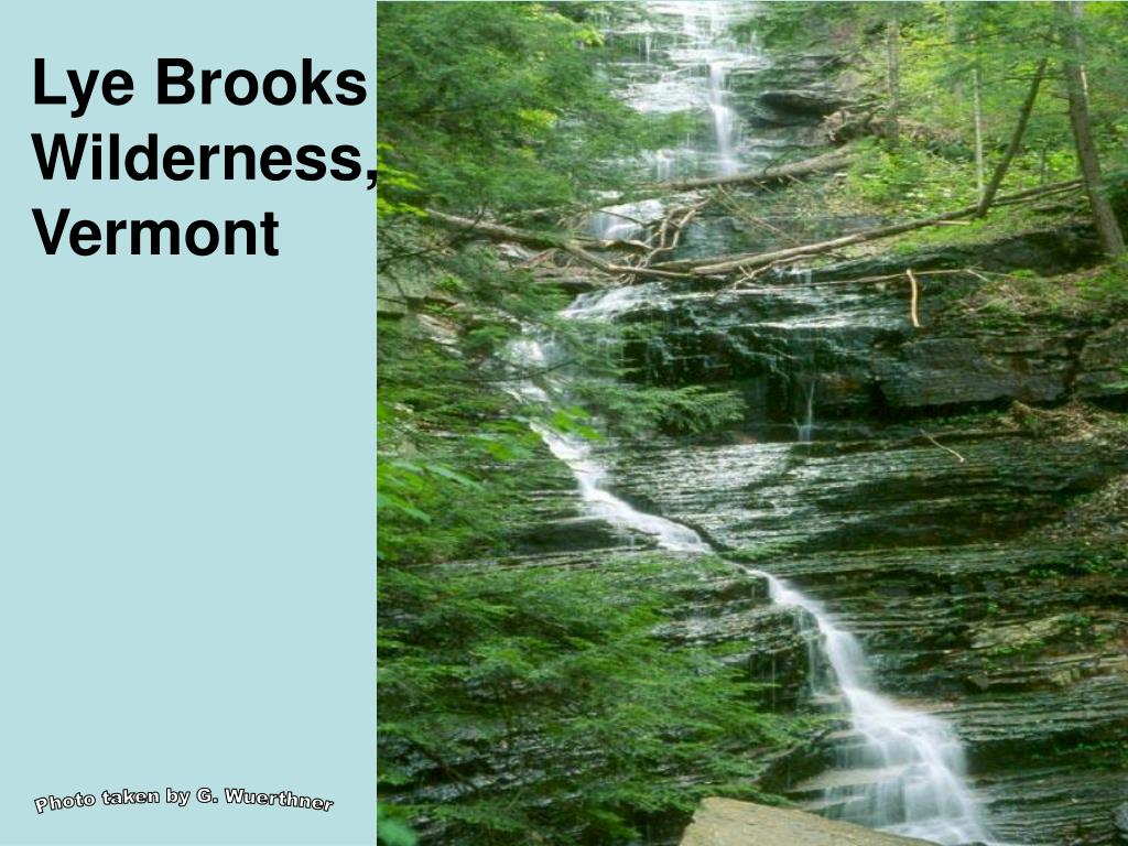Lye Brooks Wilderness, Vermont