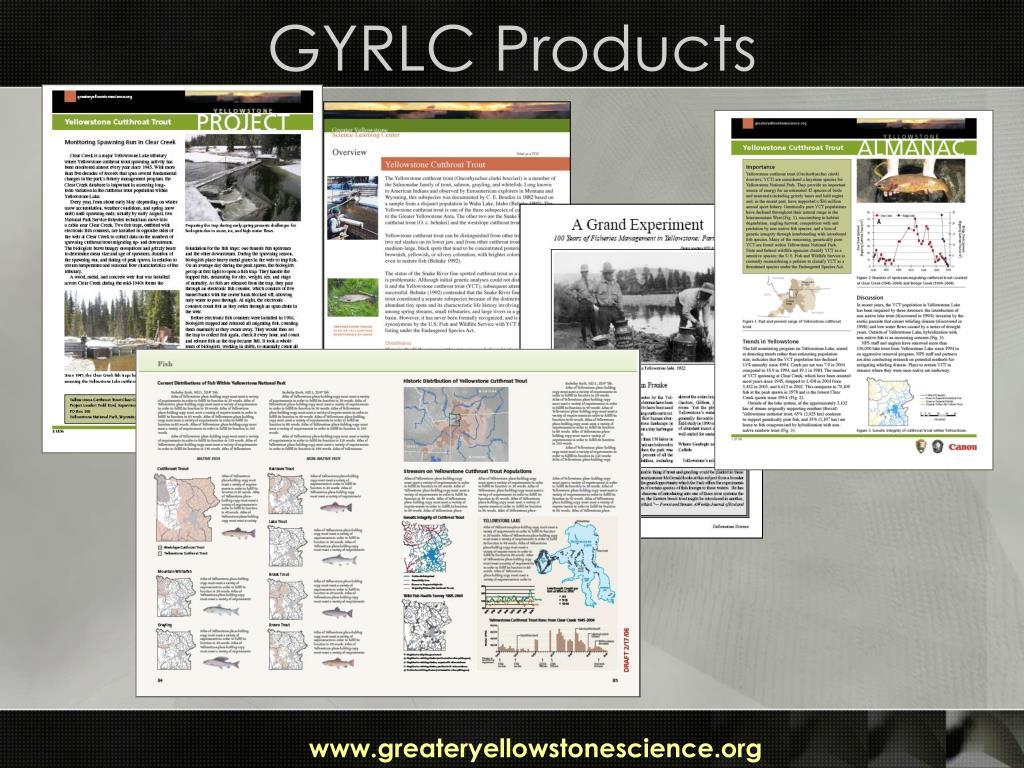 GYRLC Products