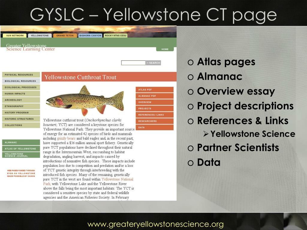 GYSLC – Yellowstone CT page