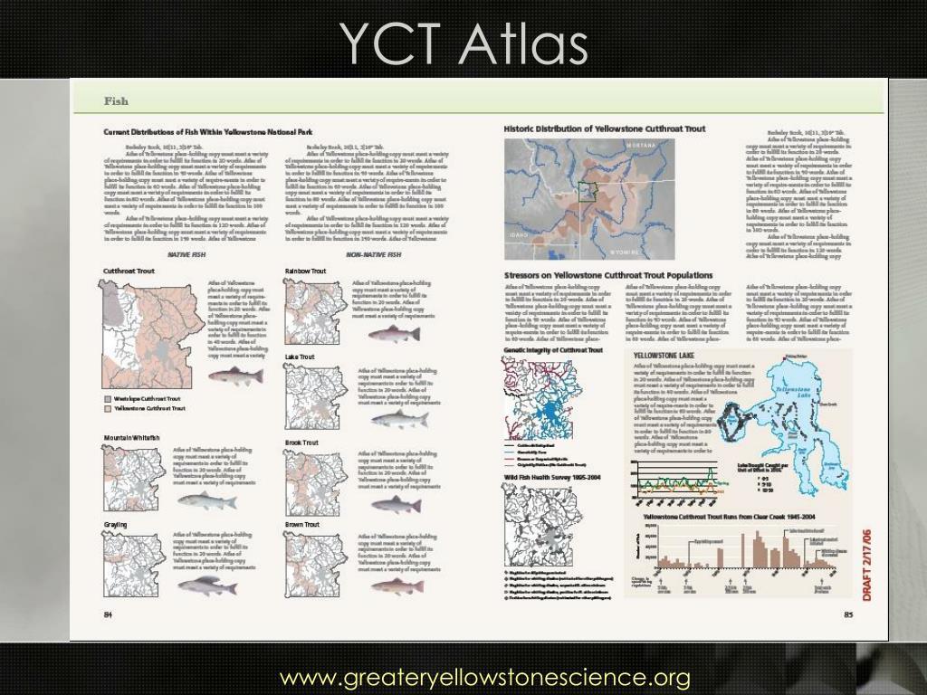 YCT Atlas