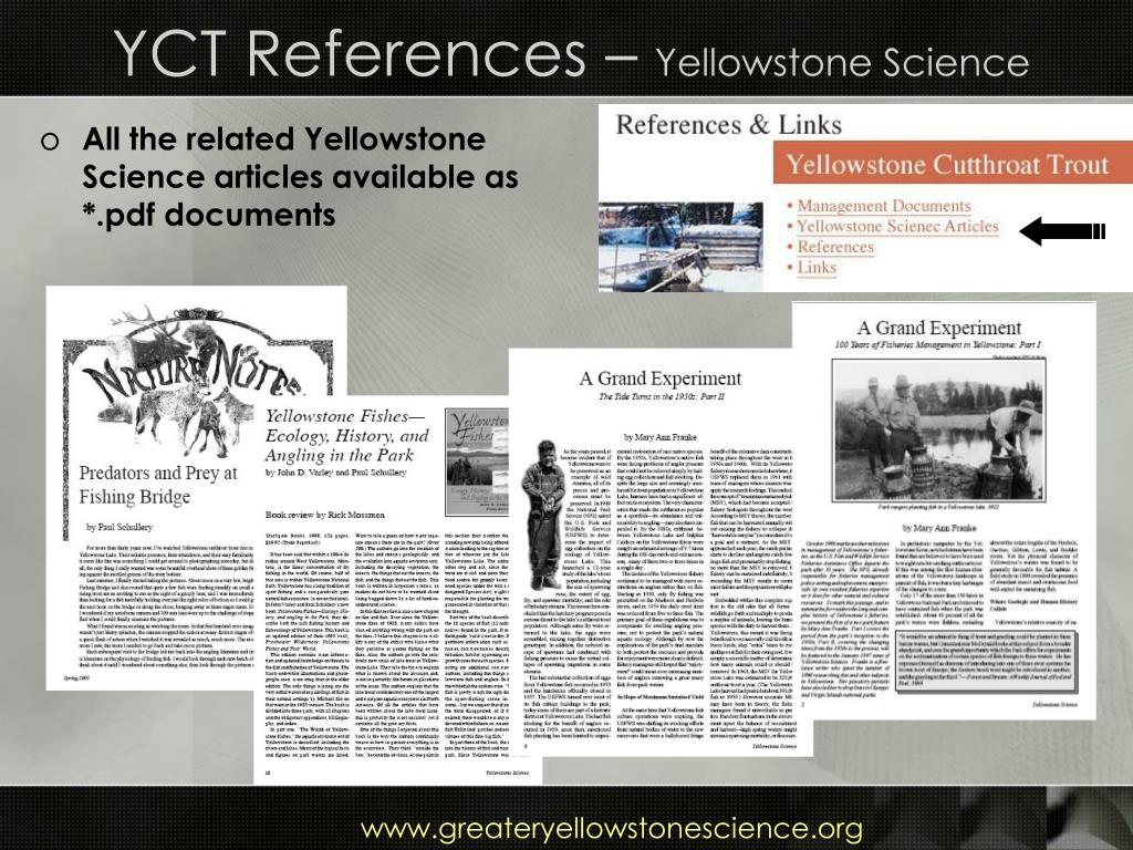 YCT References –