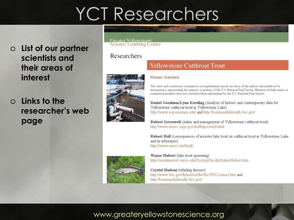 YCT Researchers